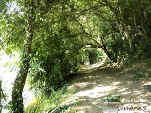 Nature Vendée Randonnée